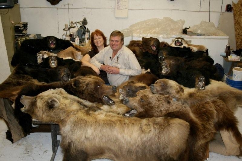 How Much Does It Cost To Taxidermy A Bear Rug Designs